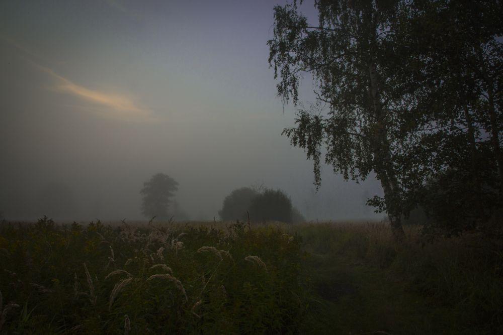 Photo in Landscape #fog #foggy #water #lake #forest #green #sunrise #karkonosze #poland #sudety #fields