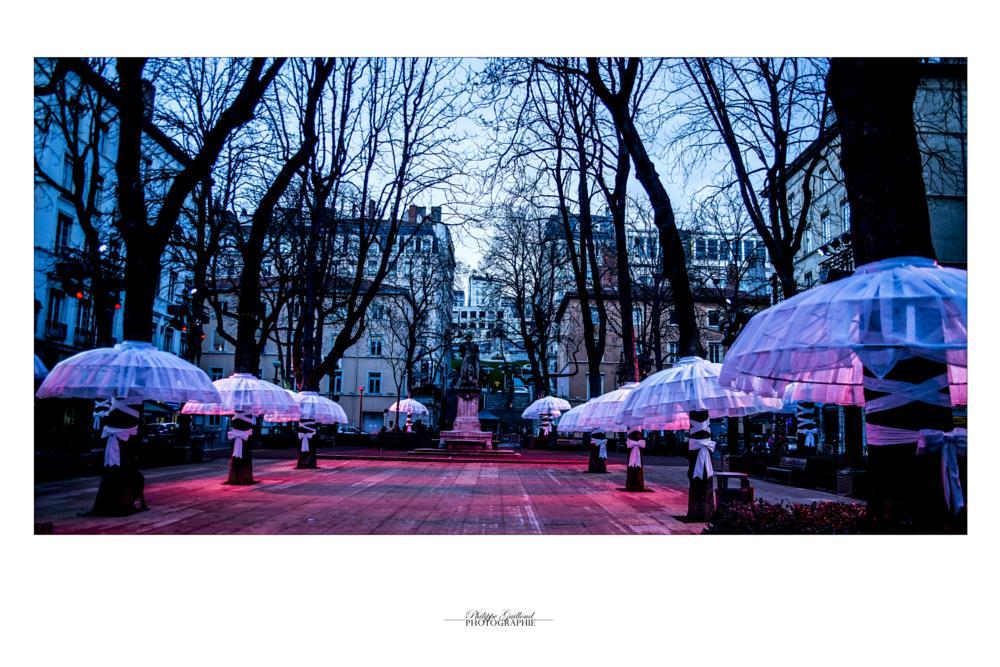 Photo in Street Photography #place #lyon #arbres #illumnations #8 décembre