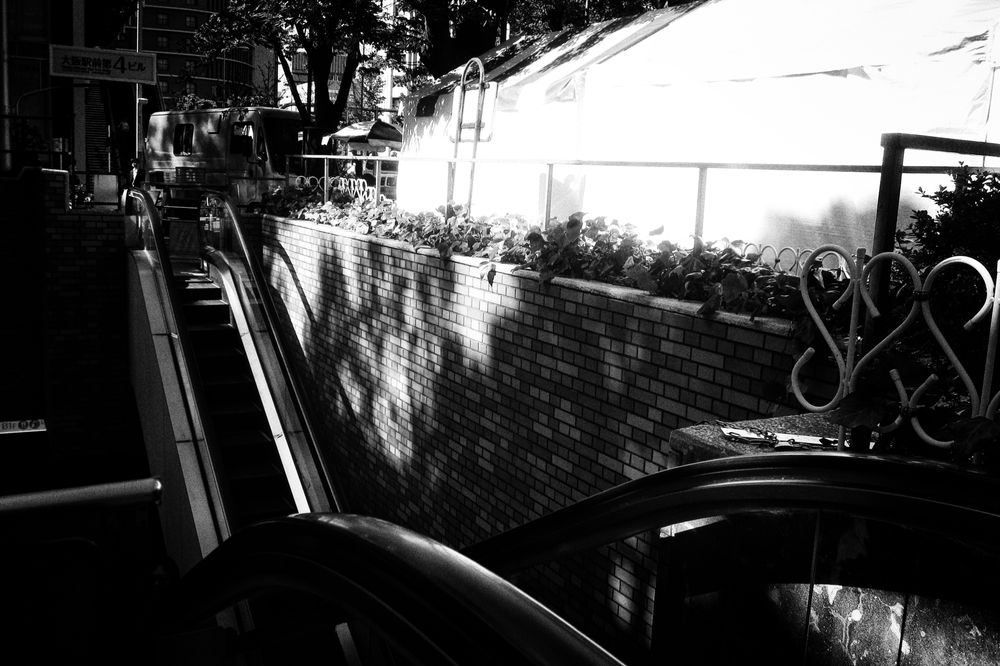 Photo in Black and White #monochrome #black and white #light and shadow #abstract #japan #osaka #street #street photography #city #urban