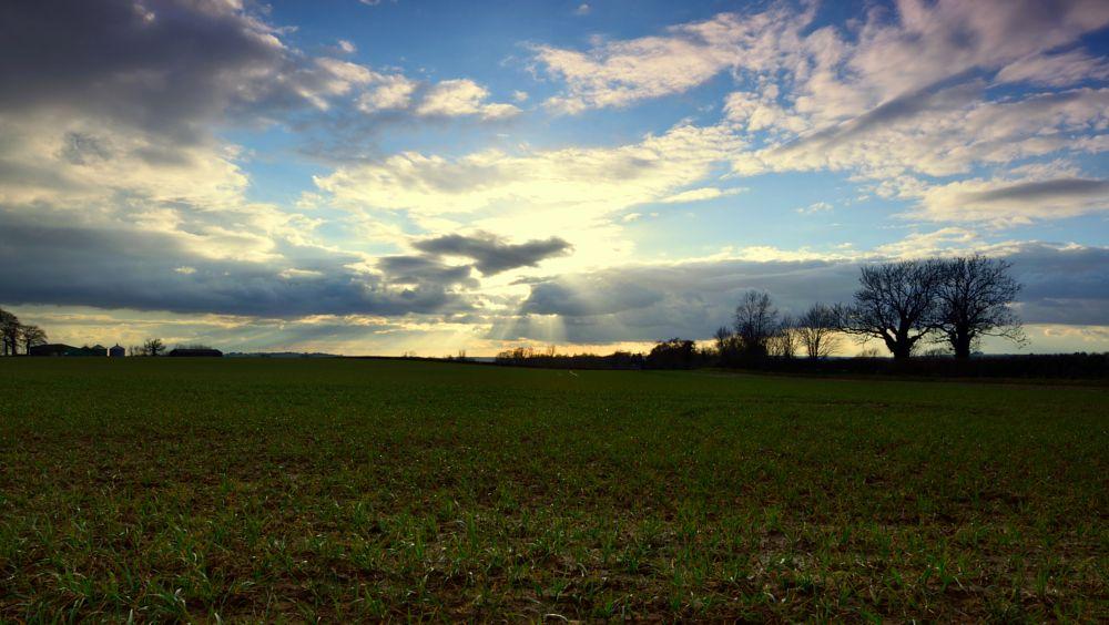 Photo in Landscape #sun #sunset #clouds #field #storm