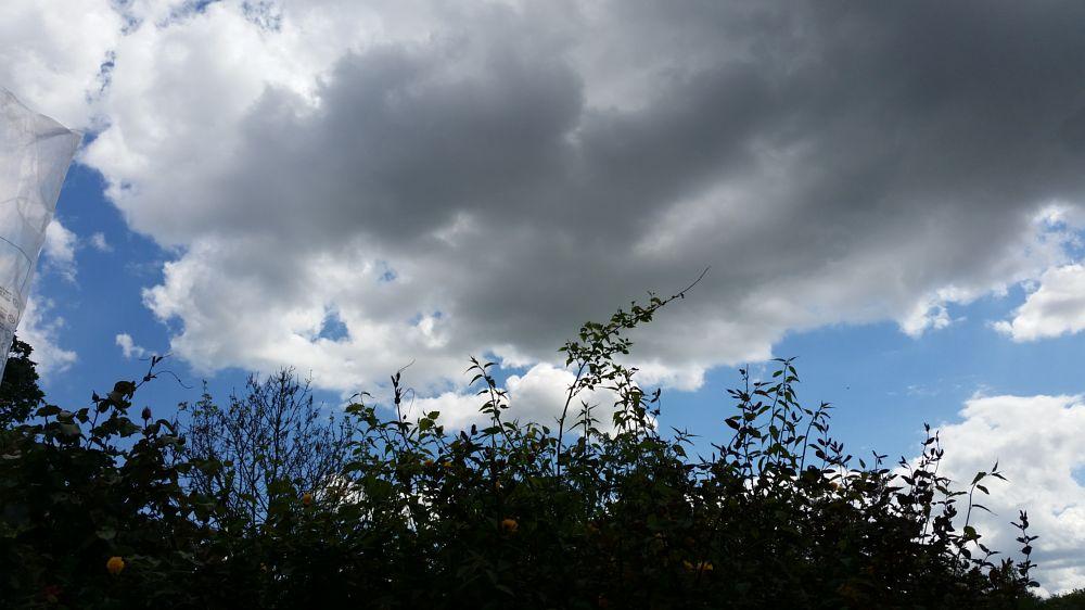 Photo in Random #sky #reyhan luttman