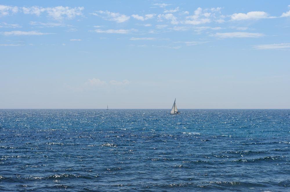Photo in Landscape #sail #sea #liguria #waves