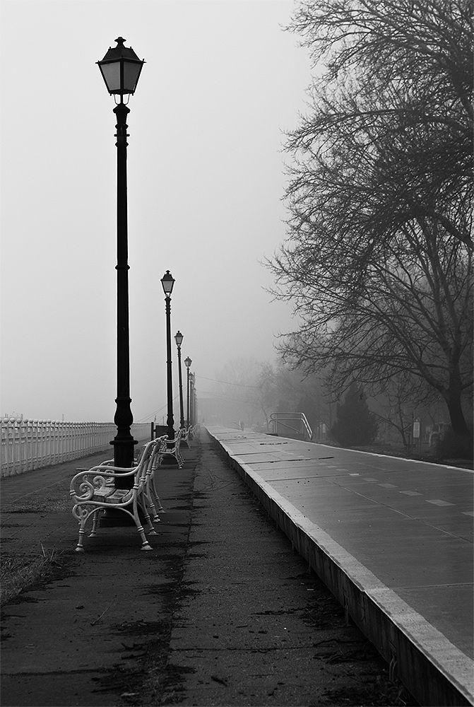 Photo in Black and White #blackandwhite #black and white #park #walk