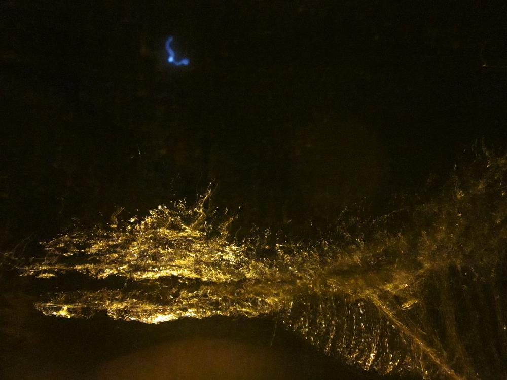 Photo in Fine Art #puddlepix #wireflare #splashtique #troubled water art #surreal #art #fossil