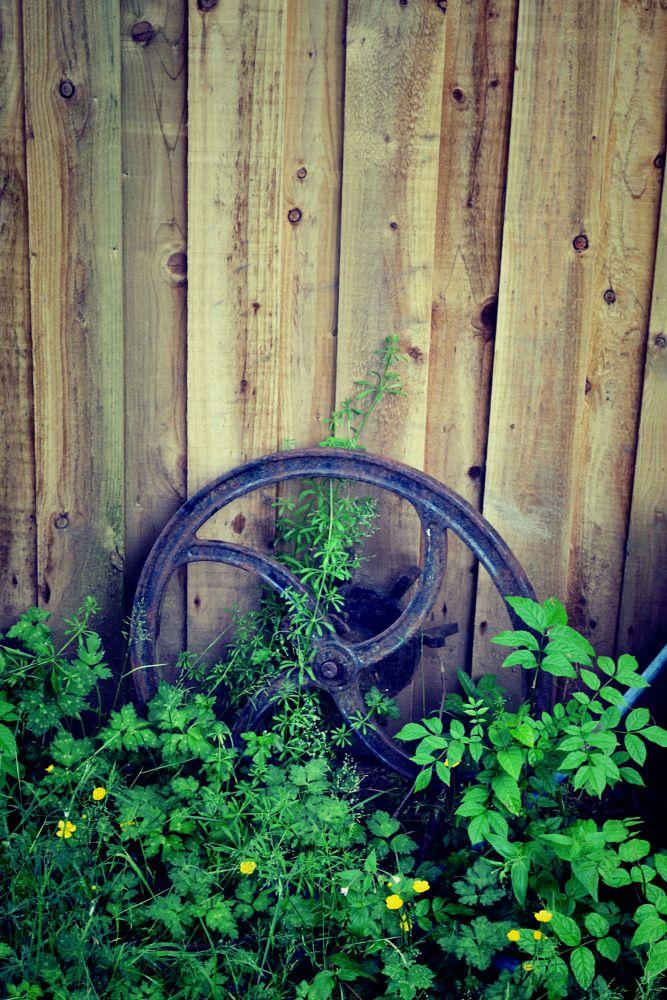 Photo in Nature #argyll #oban #wheel