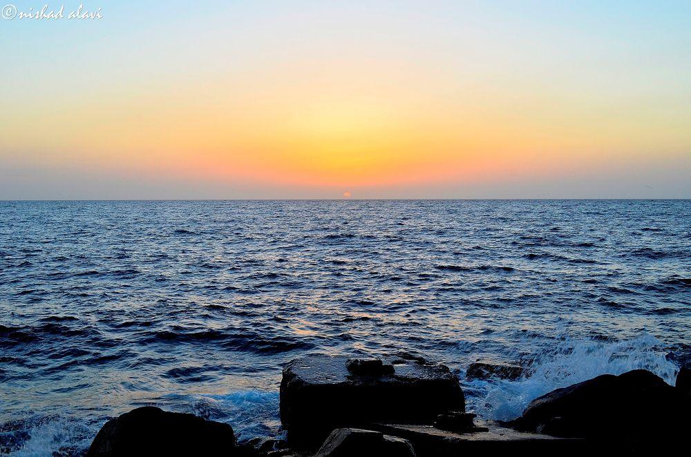 Photo in Nature #sunset #beach #nature