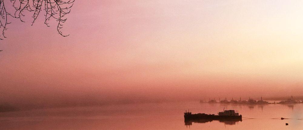 Photo in Landscape #rochester