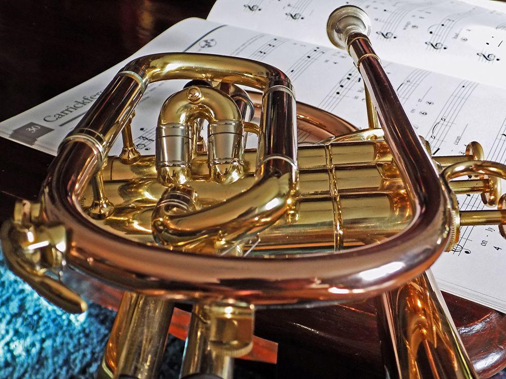 Photo in Still Life #music #instrument #brass