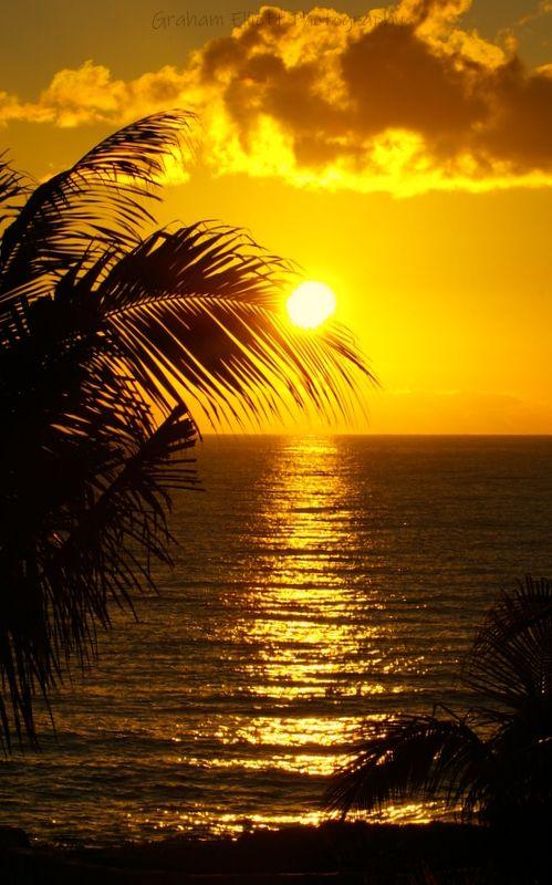 Photo in Random #outdoors #morning #sunrise #beach #sea