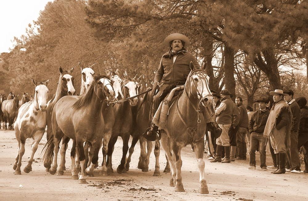 Photo in Rural #rural #horses #argentina #farm #people