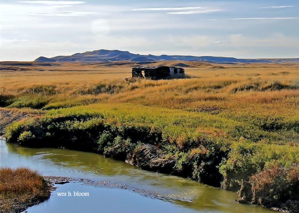 Photo in Landscape #pioneer #nature #southlands #grasslands