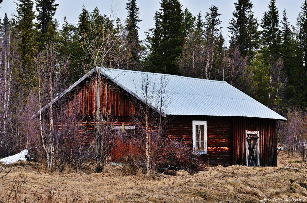 Photo in Fine Art #barn #nature #landscape #people #house #feeling #art #expression #culture #life #sadness #abandonned #lappland