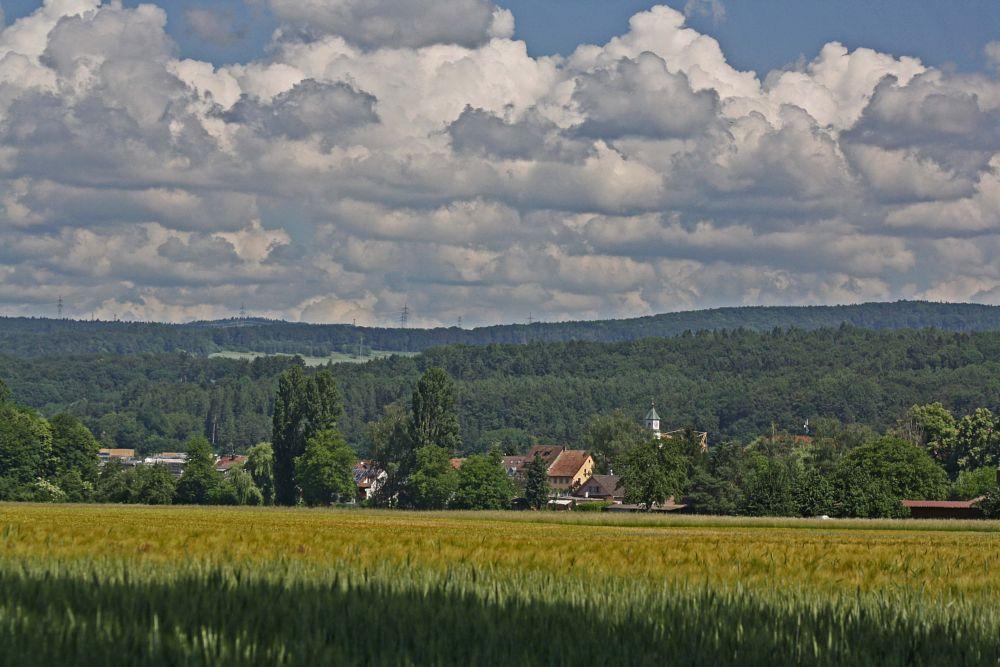 Photo in Landscape #kadelburg #südschwarzwald