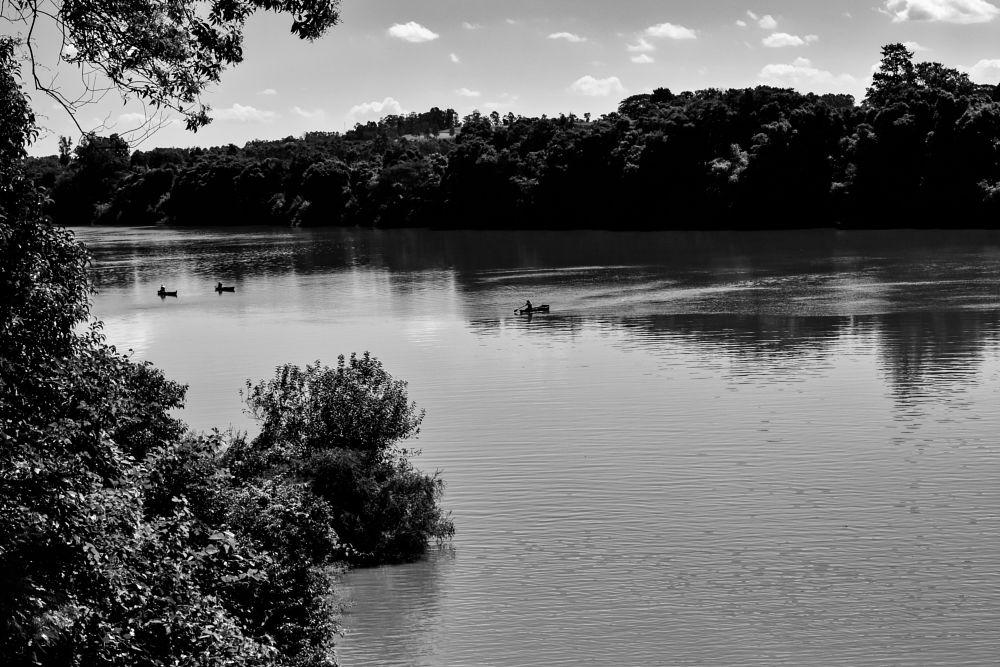 Photo in Black and White #barcos #rio #vegetação