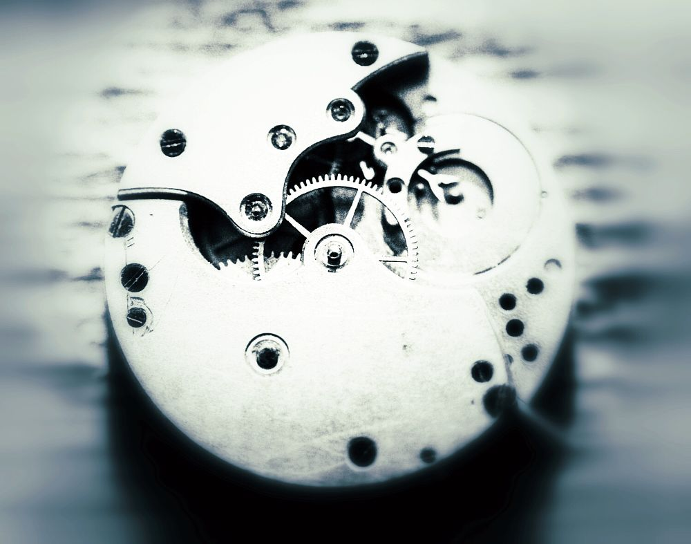 Photo in Random #watch #workings #cogs