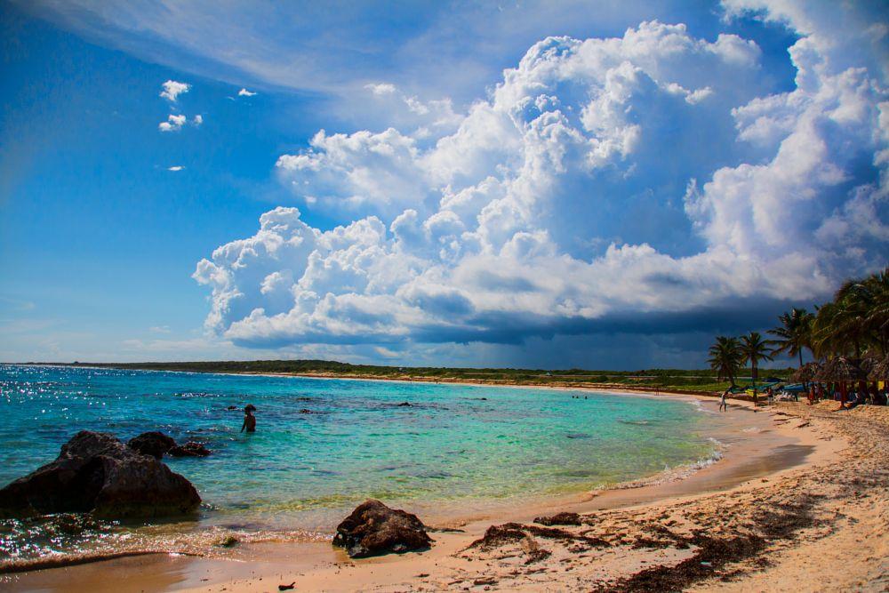 Photo in Landscape #cozumel #mexico #beach
