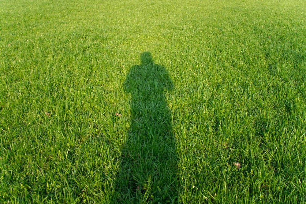 Photo in Urban #shadow