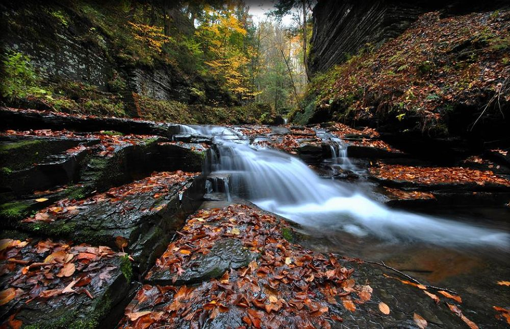 Photo in Landscape #waterfall #gorge #autumn