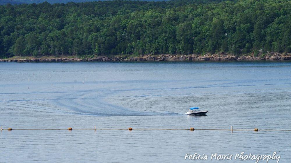Photo in Landscape #lake #water #boat #summer #summertime