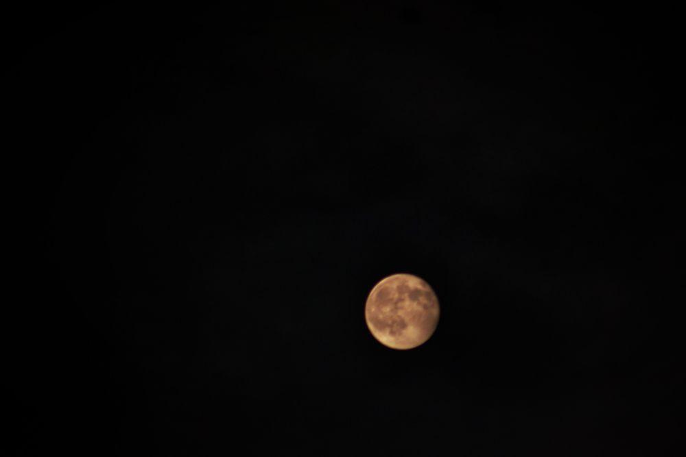 Photo in Astrophotography #moon #full moon #pink moon #stars