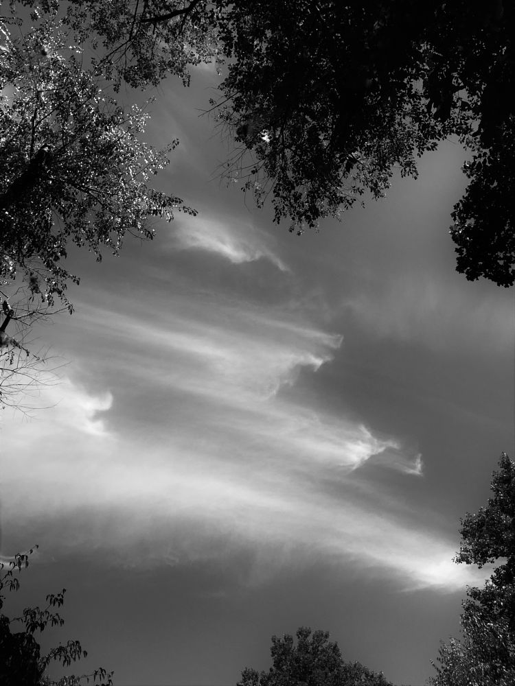 Photo in Random #nature #landscape #clouds #sky #black and white #digital photography #fine arts #creative photography