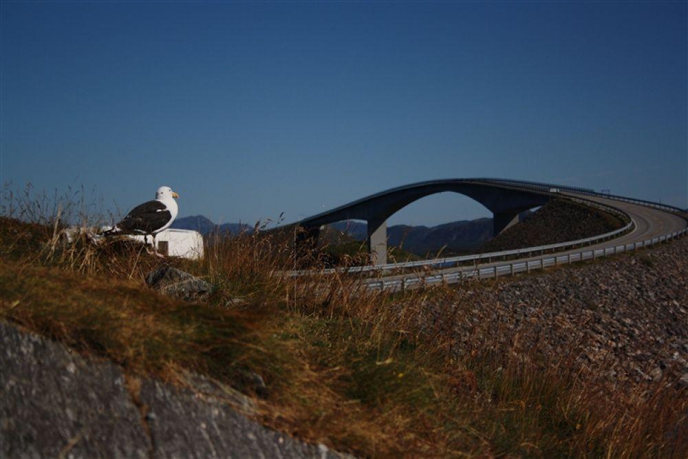 Photo in Random #atlanthavsvägen