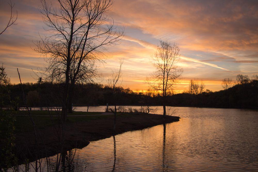 Photo in Landscape #sunrise #park