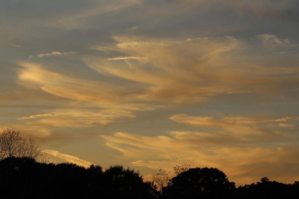 Photo in Random #sun #sunset #clouds #nature #sky