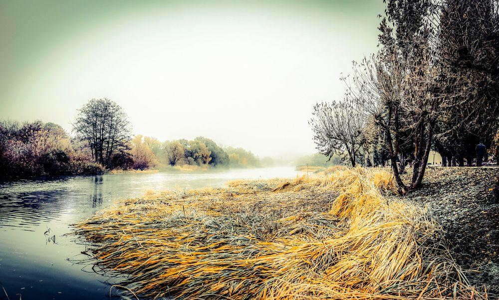 Photo in Landscape #tsna #river #alexandrseleznev