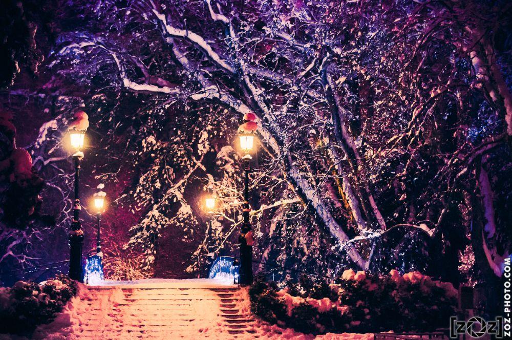 Photo in Cityscape #pont #amour #bridge #love #night #light #snow #annecy #france #landscape #cityscape #zoz