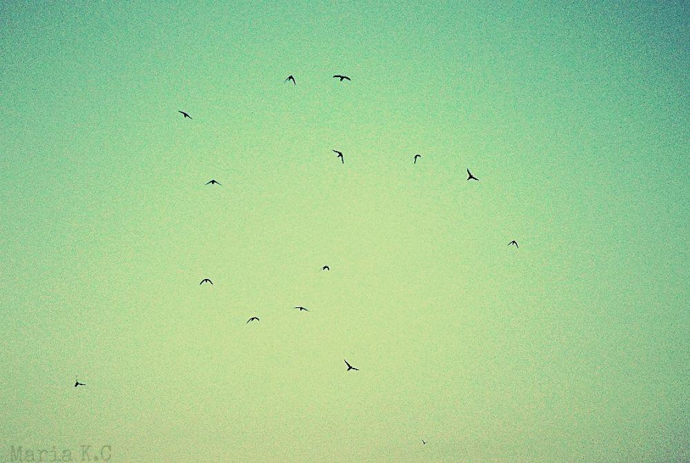 Photo in Random #2013 #summer