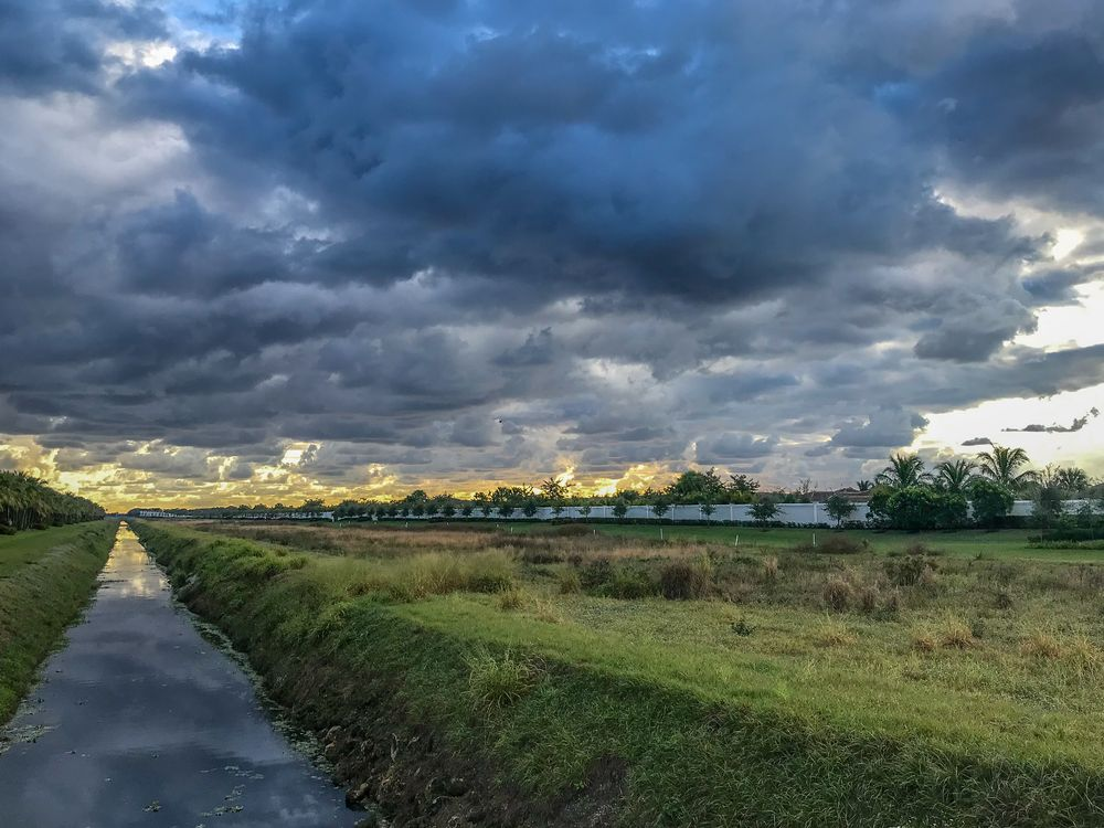 Photo in Landscape #florida