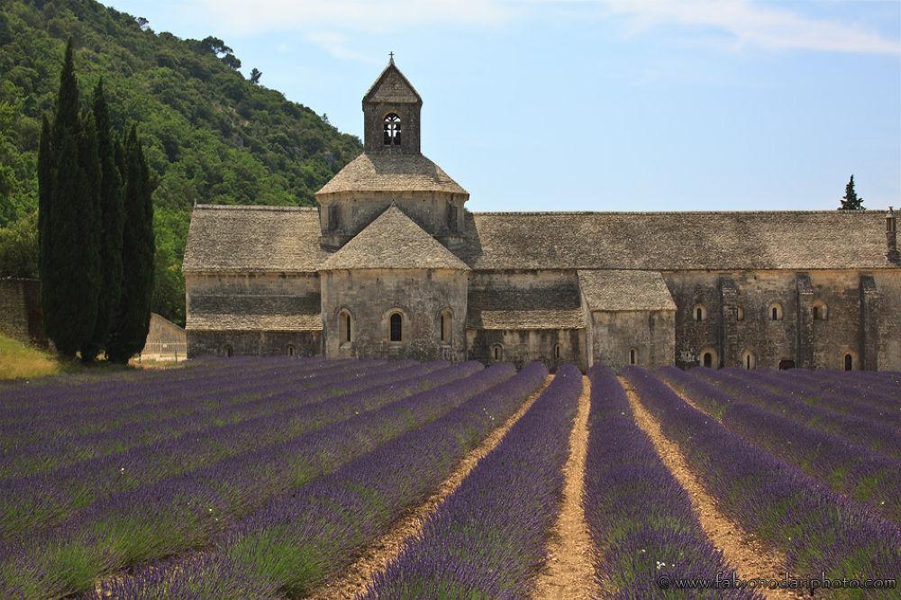 Photo in Architecture #ypa2013 #senanque #abbey #provence #france #francia #lavender #fabinodariphoto #photographer