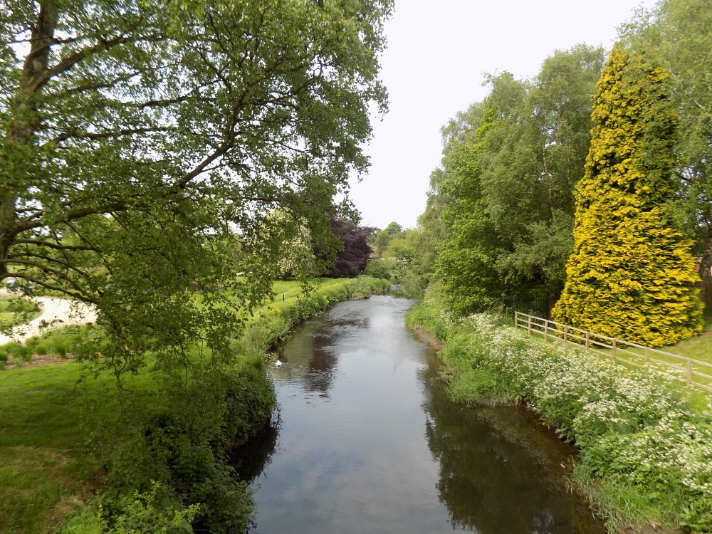 Photo in Landscape #river #trent #the gardens