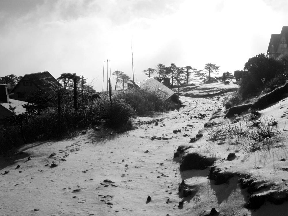 Photo in Travel #snow #sandakphu #morning