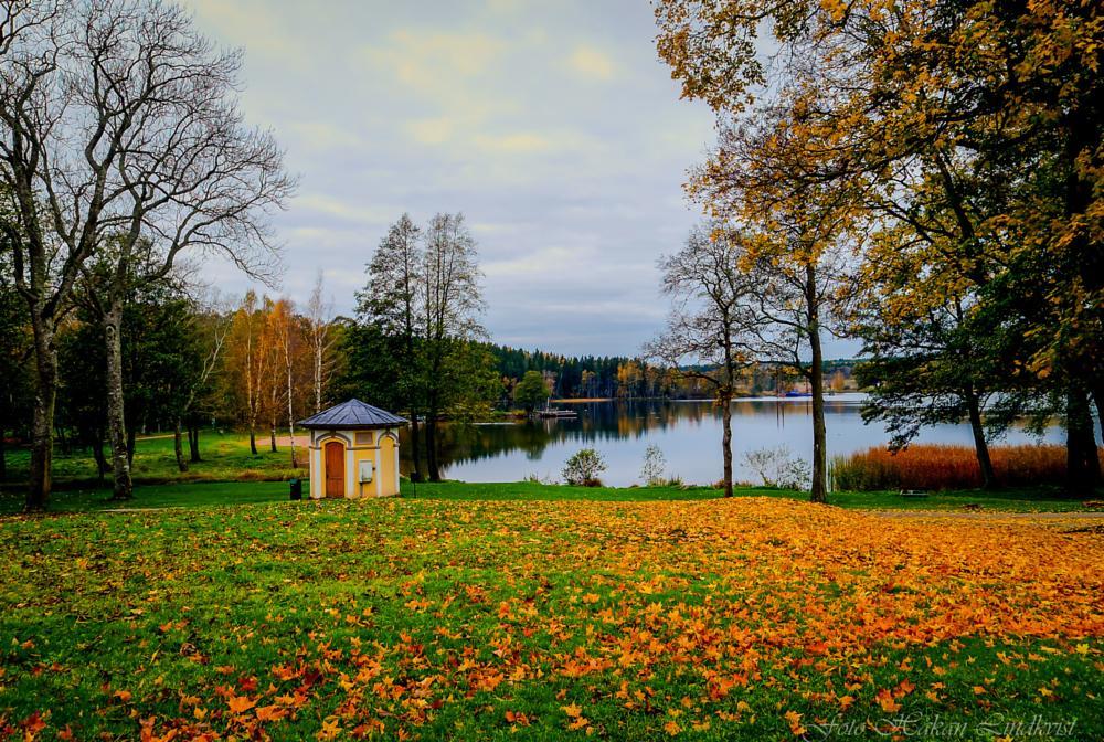Photo in HDRI #autumn #hdr