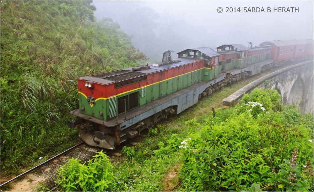 Photo in Travel #demodar #rail road #railway #ceylon #train #rail  hike