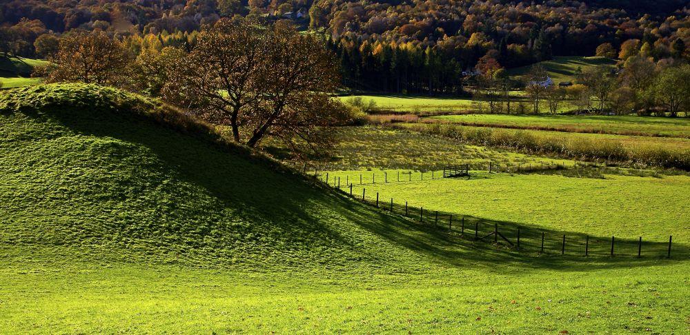 Photo in Random #hill #trees #sky #green #grass