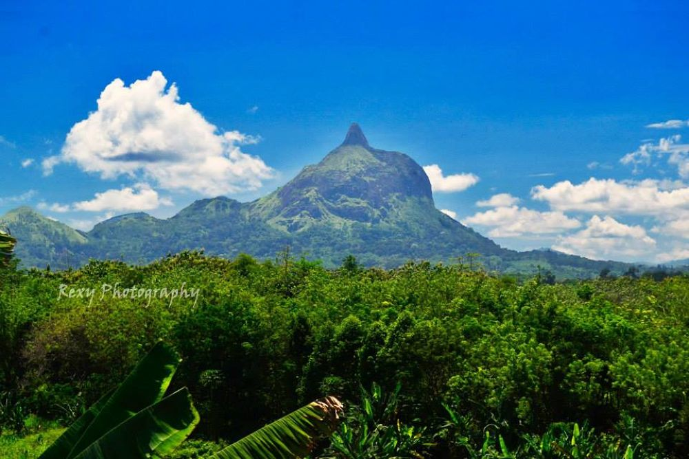 Photo in Landscape #hill #amazing #nature #beautifull