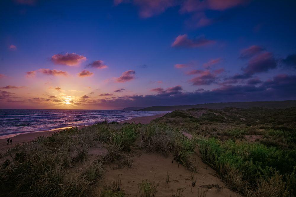 Photo in Landscape #sunset #beach #clouds #sand #grass #landscape #sea