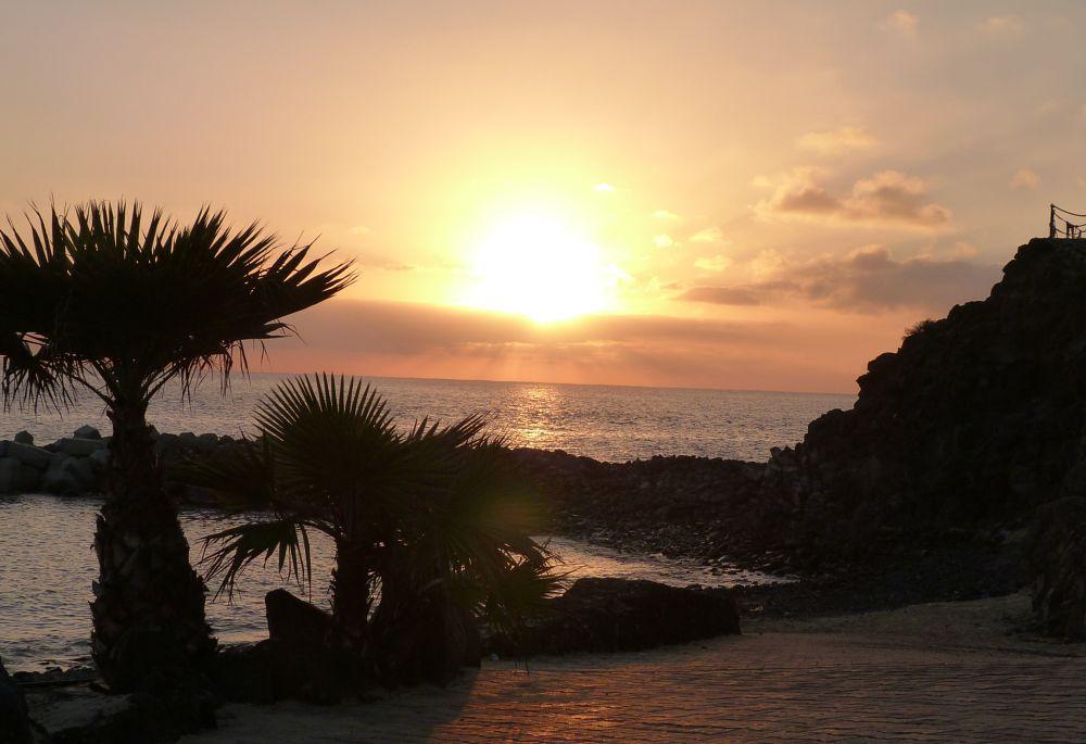 Photo in Random #sunset #palms #playa #beach #sea #clouds #canary islands