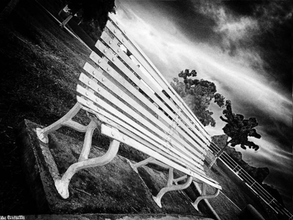 Photo in Black and White #banca #blanco y negro #soledad #cielo #parque