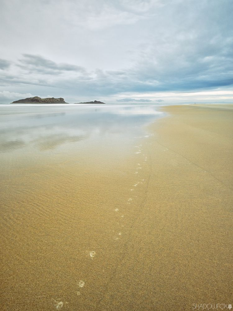 Photo in Landscape #beach #sand #low tide #dunedin #new zealand #coastline #canonnz #tamronnz #shadowfoxcreative #clouds #sunrise