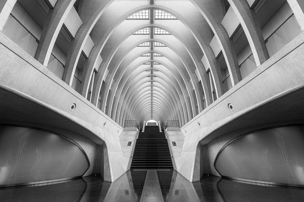 Photo in Architecture #architecture #liege #belgien #black and white #calatrava #liege-guillemins