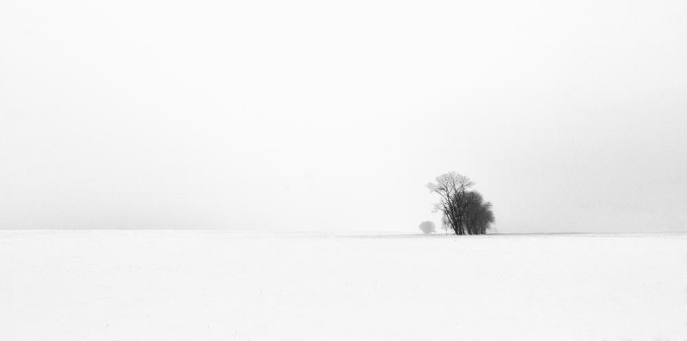 Photo in Landscape #jan neumann #landscape #winter