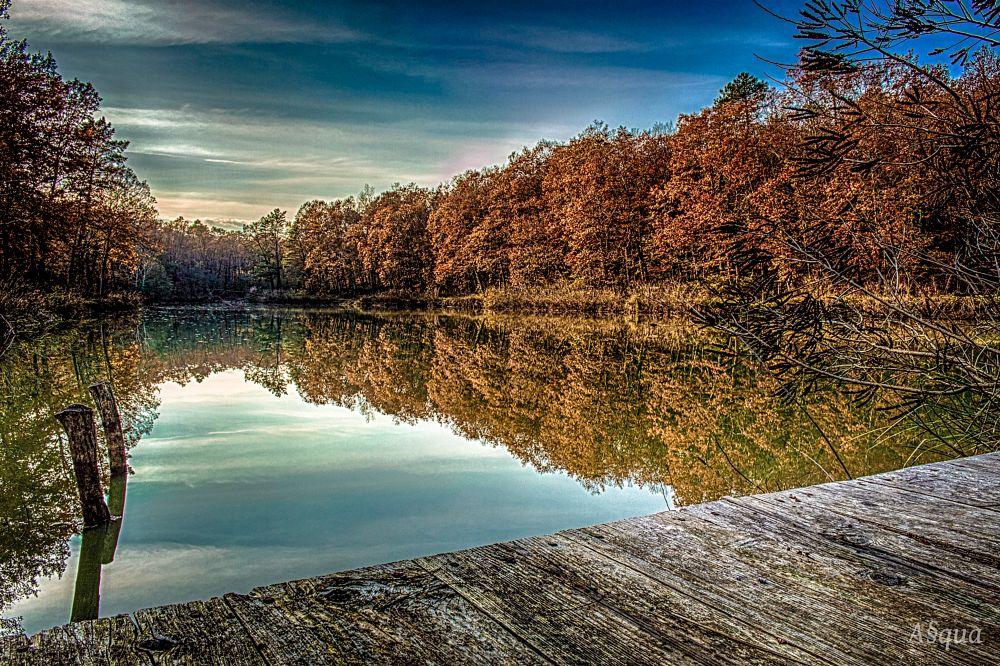 Photo in HDRI #lake #hdr #landscape