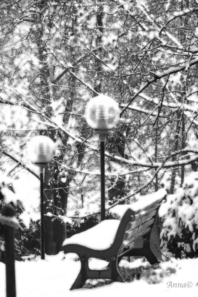 Photo in Random #snow #wrapped #january #black&white