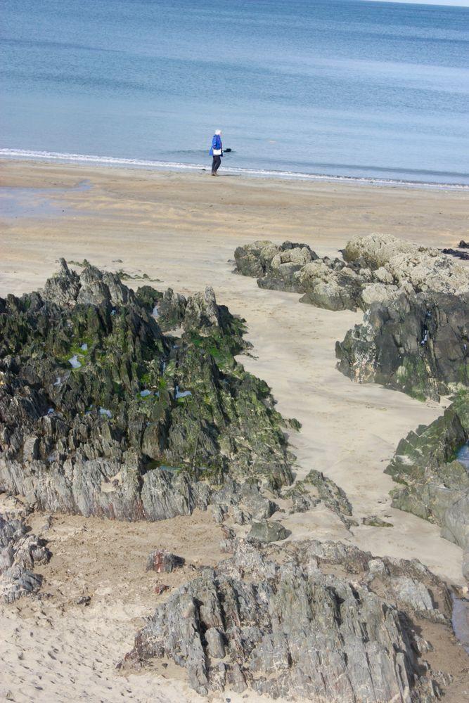 Photo in Sea and Sand #belfast lough #crawfordsburn beach #sand #rocks #walker #co. down #northern ireland