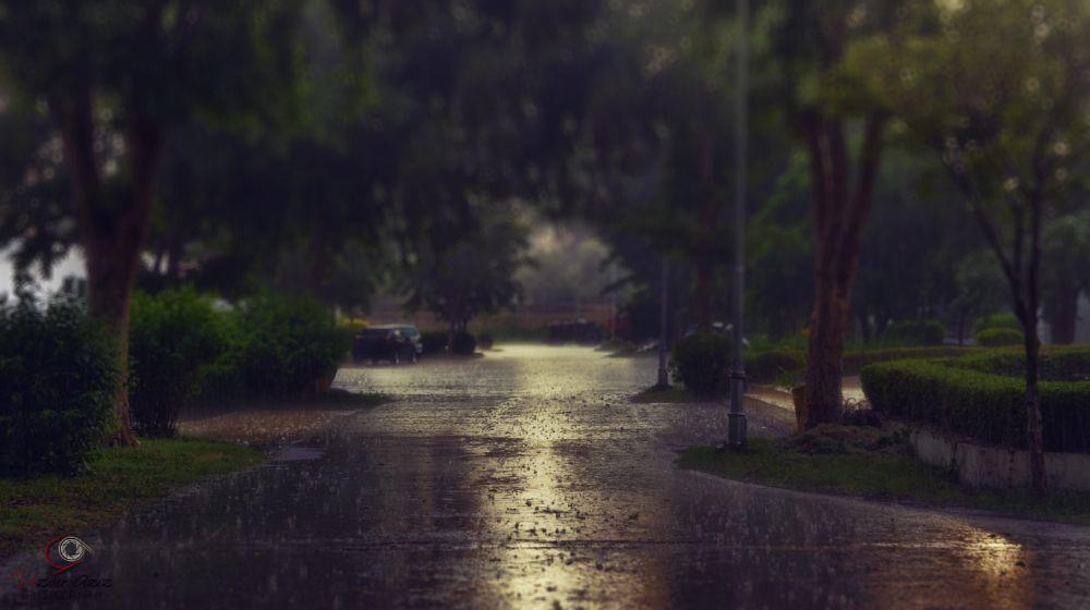 Photo in Landscape #rain #weather #nature