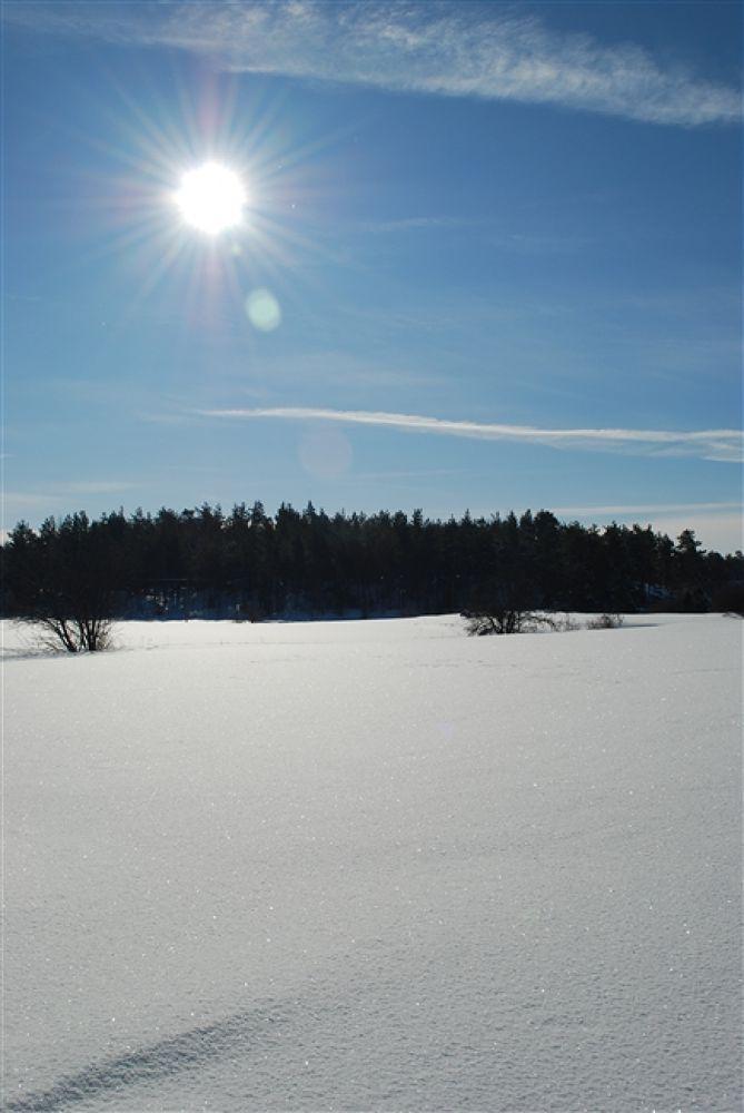 Photo in Random #2010 #fin #vinterdag